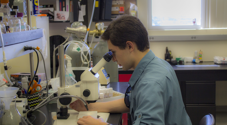 Jeremiah Pate working in the lab
