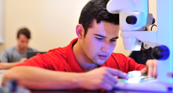 Male student working with a microscope